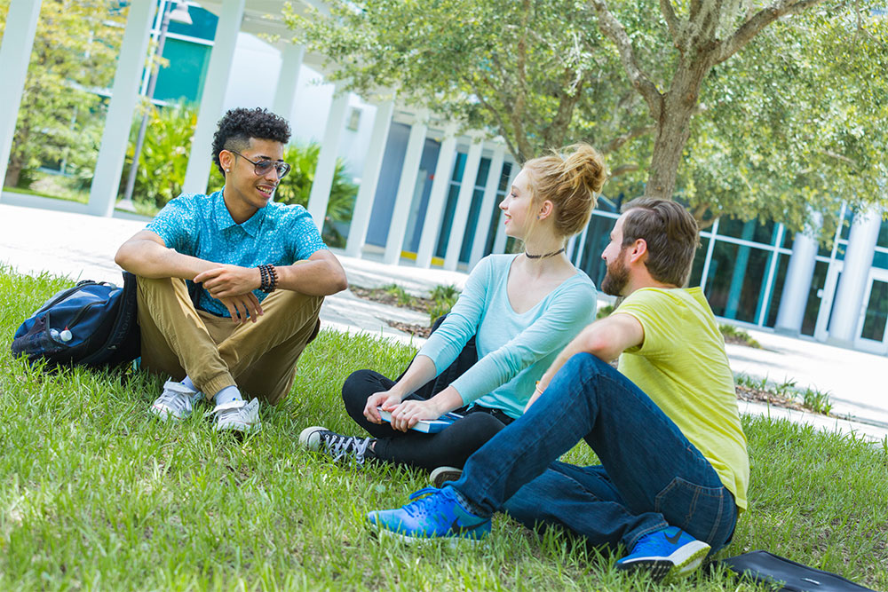 Group of students sitting on grass